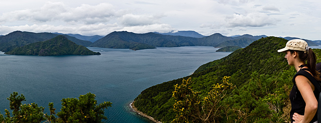 Panoramic View Of Queen Charlotte Sound